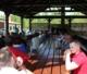Dzień Wspólnoty Kościoła Domowego - 14.05.2017